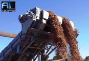 Convoyeur plaquettes de bois - solution Recyclage